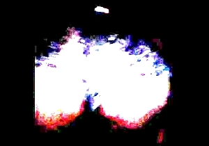 RetardedNiggerslaveAssworship001
